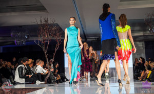 Walk the Runway 11-15-2015- Beau McGavin Images-320-4