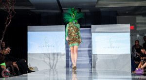 Walk the Runway 11-15-2015- Beau McGavin Images-399-4