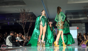 Walk the Runway 11-15-2015- Beau McGavin Images-453-4