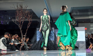 Walk the Runway 11-15-2015- Beau McGavin Images-455-4