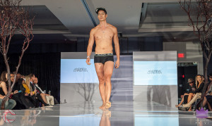 Walk the Runway 11-15-2015- Beau McGavin Images-574-4